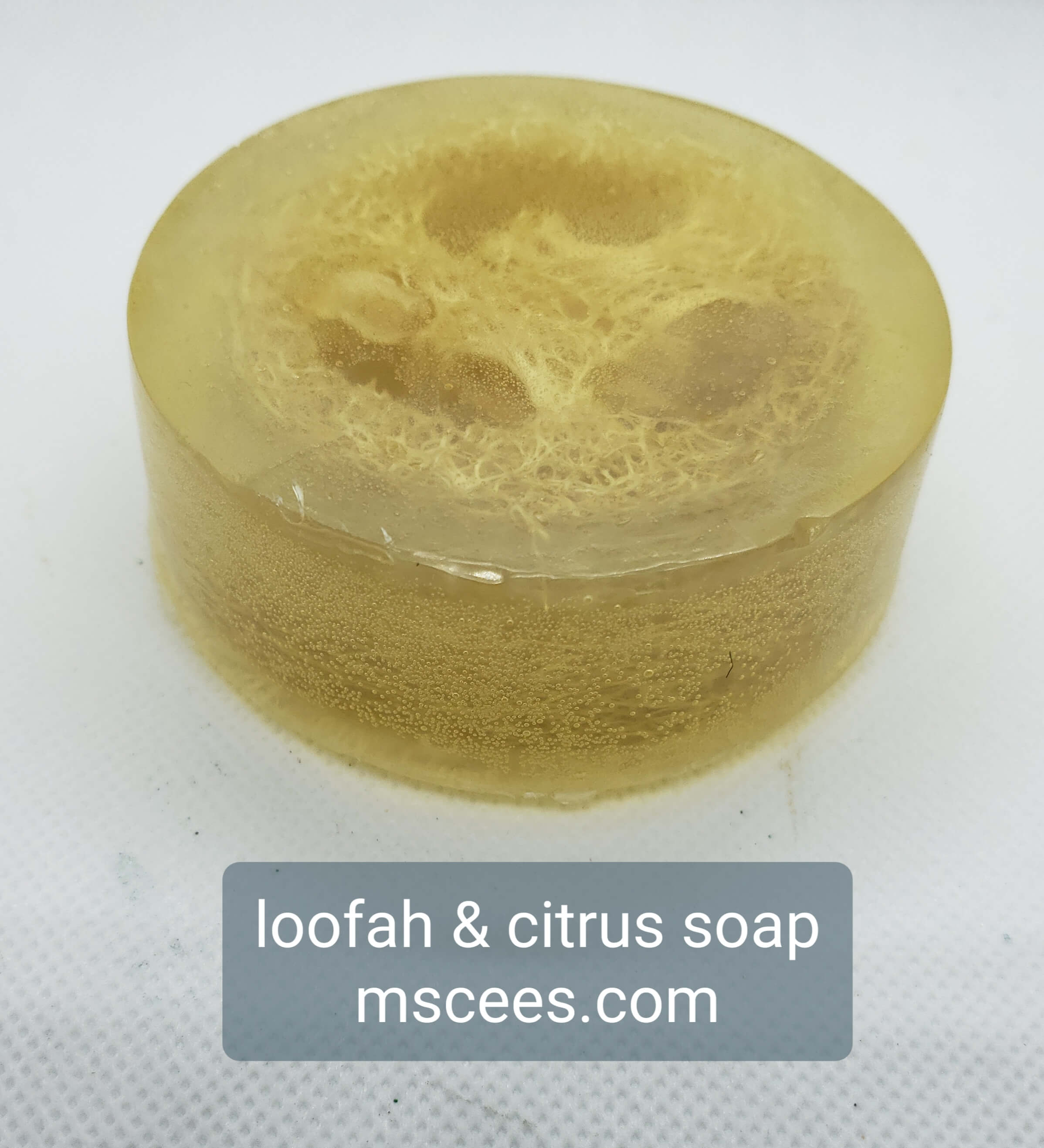 Citrus Soap with a Loofah Ring